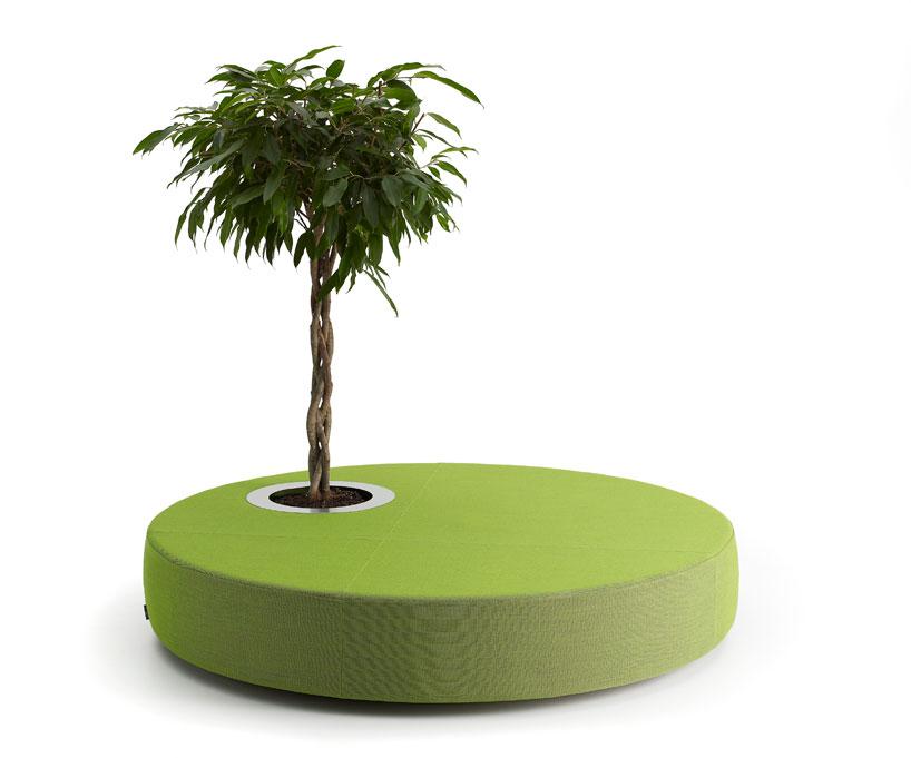un canapé et une plante par offecct