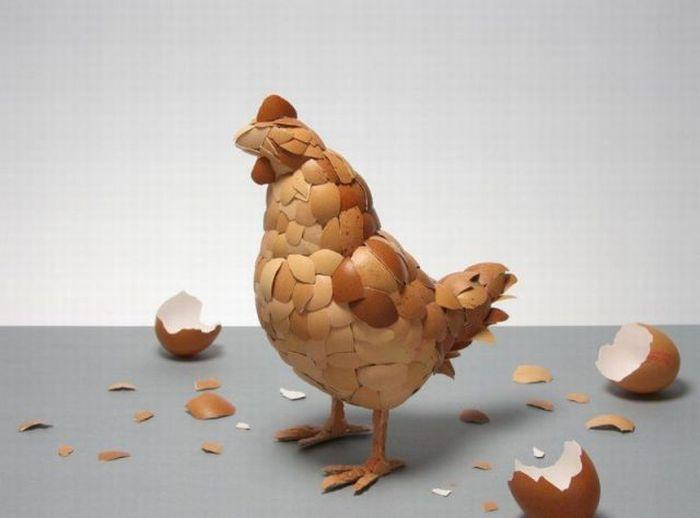 Poule-Coquilles d'oeufs